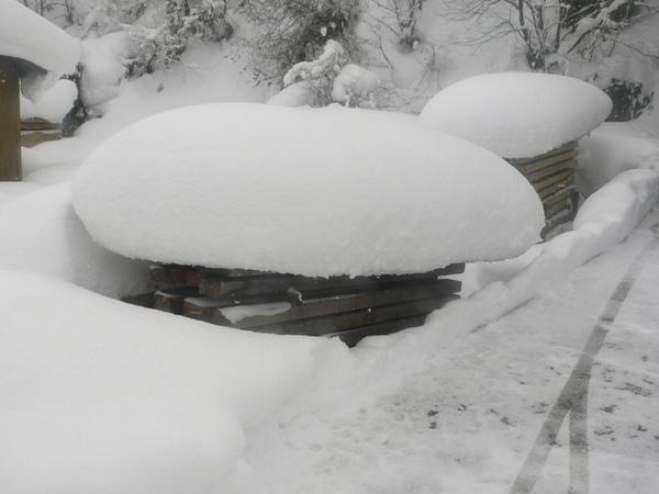 香菇造型積雪