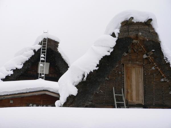 用稻草搭建的屋頂