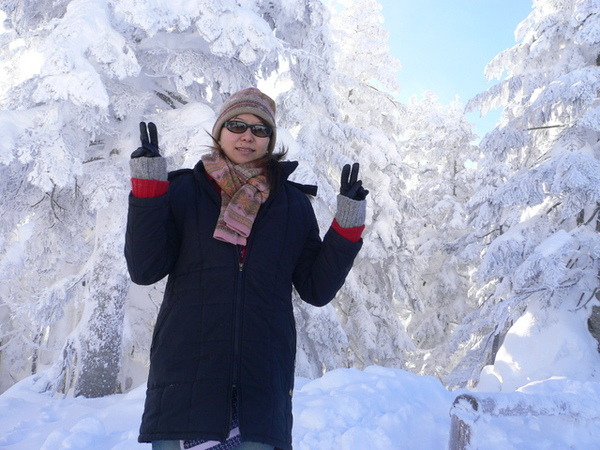 北阿爾卑斯山-樹冰