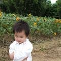 960811_45_向陽農場-B.jpg