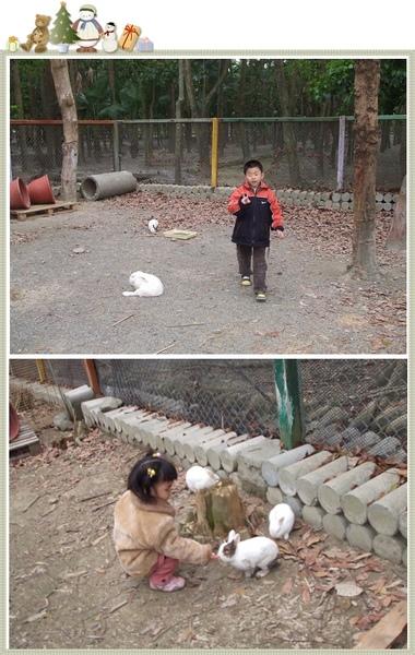 南元休閒農場-親親小兔.jpg