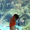 990504_192_墾丁海洋博物館.jpg