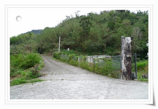 祕境的山坡小道.JPG