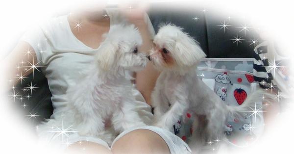 樂樂kiss來福97.9-1.jpg