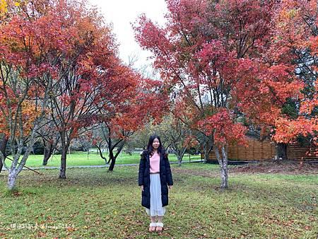 Photo 2020-11-13, 15 36 58_batch.jpg