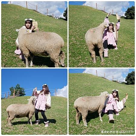 Photo 2020-11-11, 15 31 14_batch.jpg