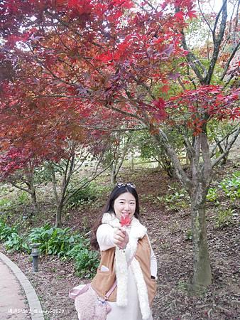 Photo 2020-11-12, 16 08 07_batch.jpg