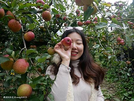 Photo 2020-11-12, 17 08 00_batch.jpg
