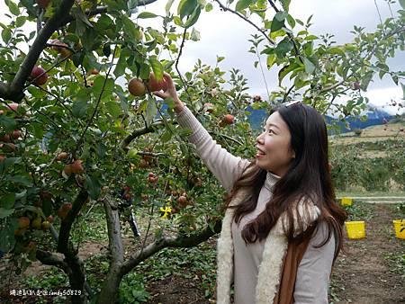 Photo 2020-11-12, 17 19 08_batch.jpg