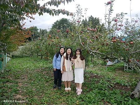 Photo 2020-11-12, 17 43 15_batch.jpg
