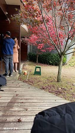 Photo 2020-11-13, 09 35 00_batch.jpg