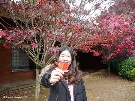 Photo 2020-11-13, 11 35 20_batch.jpg