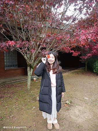 Photo 2020-11-13, 11 35 01_batch.jpg