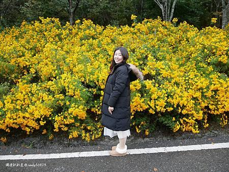 Photo 2020-11-13, 16 34 40_batch.jpg
