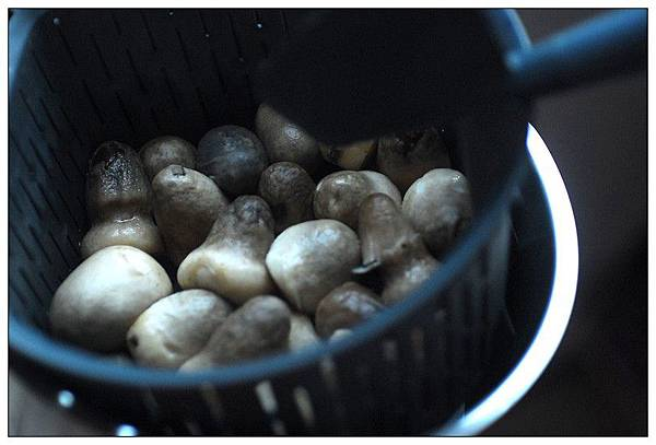01煮草菇.jpg