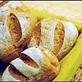 07黑糖雜糧小麵包.jpg