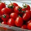 04洗番茄.jpg