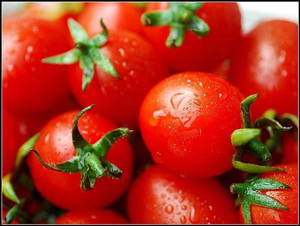 00洗番茄.jpg