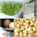 02煮蛋豆漿.jpg