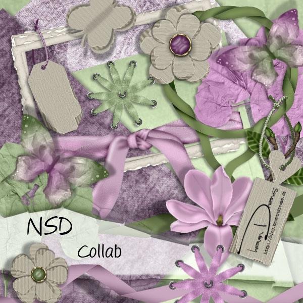 HD_NSD_collab
