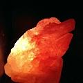 金蟾蜍鹽燈