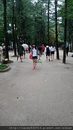 20140819_124256.jpg