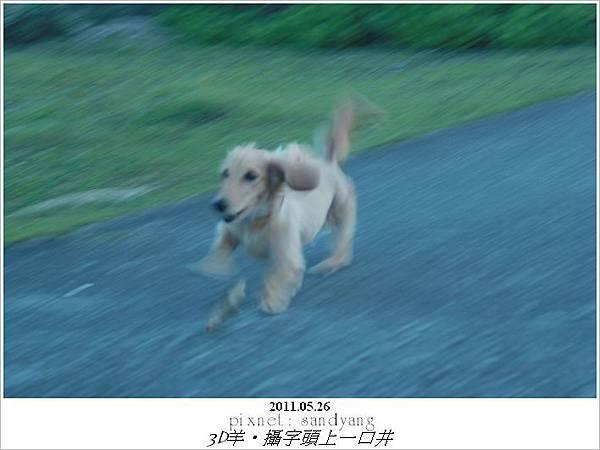 nEO_IMG_IMG_3343.jpg