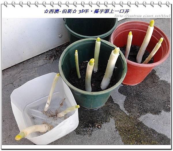 nEO_IMG_nEO_IMG_2013-12-13 14.51.25.jpg