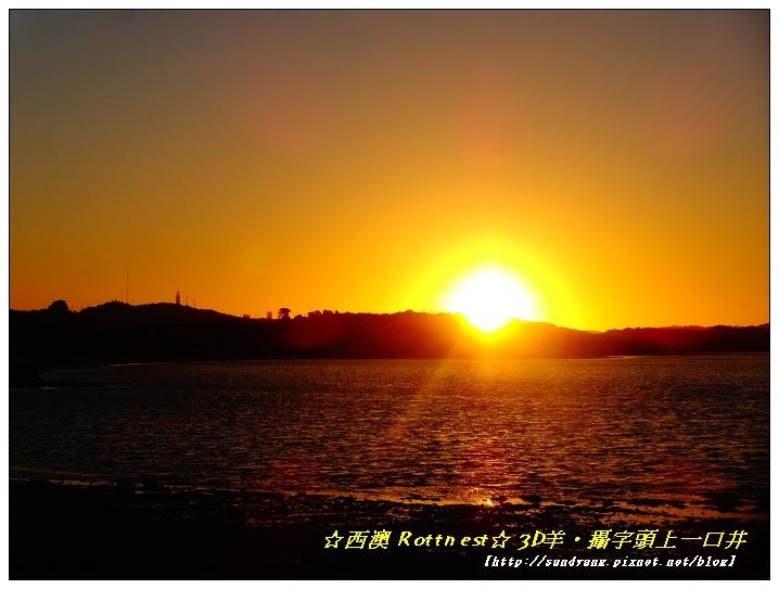 nEO_IMG_DSC03539.jpg