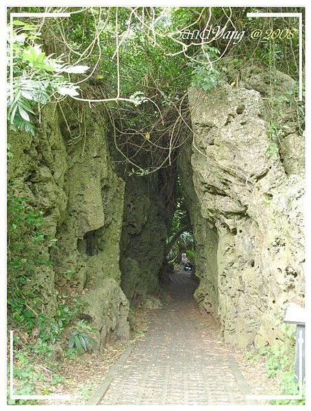Crevice小裂谷