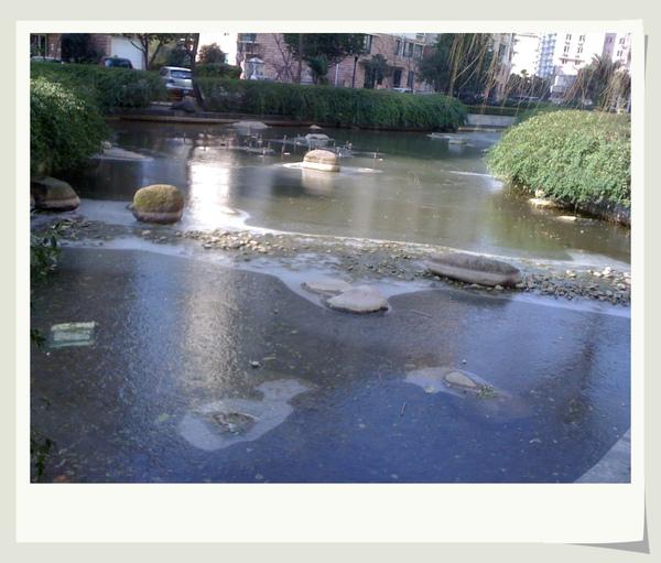 小區的池塘結冰了