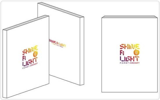 20091205 shine_a_light_pamphlet.jpg
