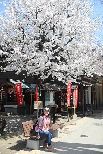 2018日本高山,白川,松本,明古屋之旅_180425_0157.jpg