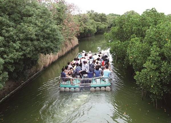 紅樹林竹筏河.jpg