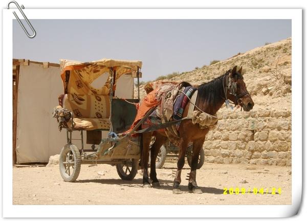 玫瑰城的雙人座馬車
