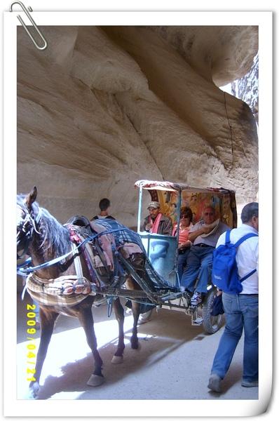 坐在馬車上的觀光客