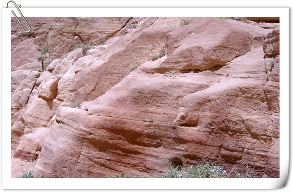 玫瑰色的石壁(近拍)