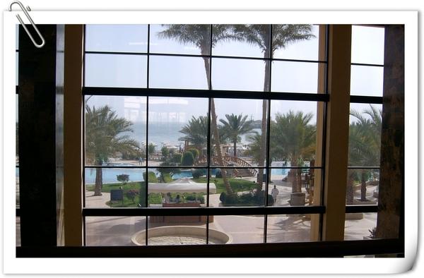 渡假飯店的泳池景觀