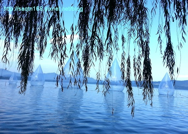 西湖4.jpg