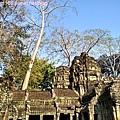 塔普倫廟1.jpg