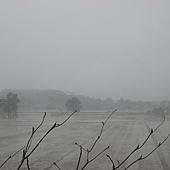 20110227苗栗竹南台灣燈會-(1).JPG