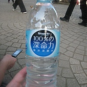 20110227苗栗竹南台灣燈會- (107).JPG