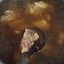紅棗排骨湯-3.jpg