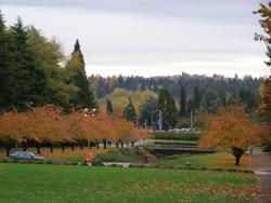 University of Washington-2