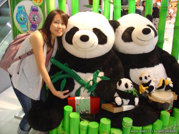 擁抱大熊貓