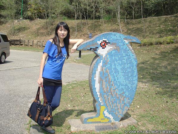 我二姐與瓷磚鳥