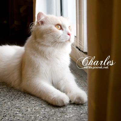 charles04.jpg