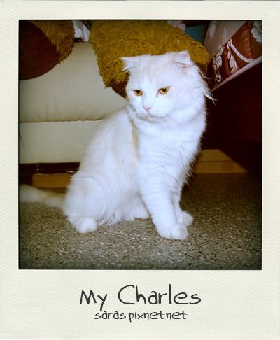 charles05.jpg