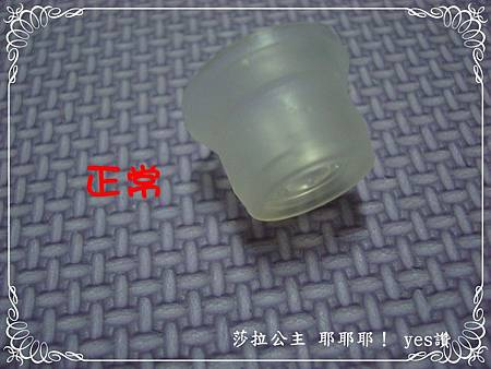 DSC00098-部落格用.JPG
