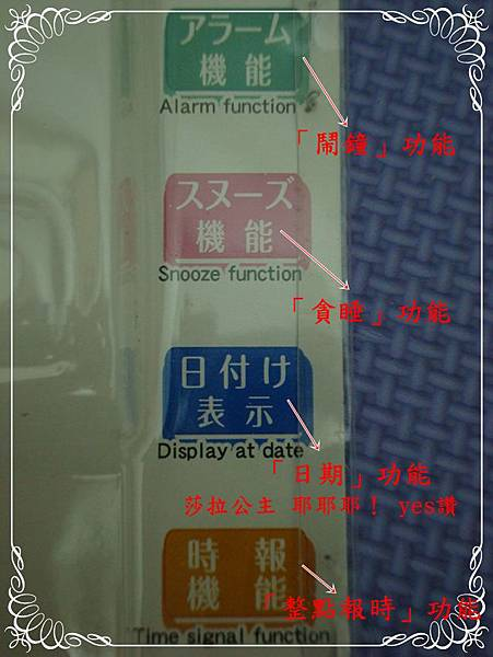 DSC02843-部落格用